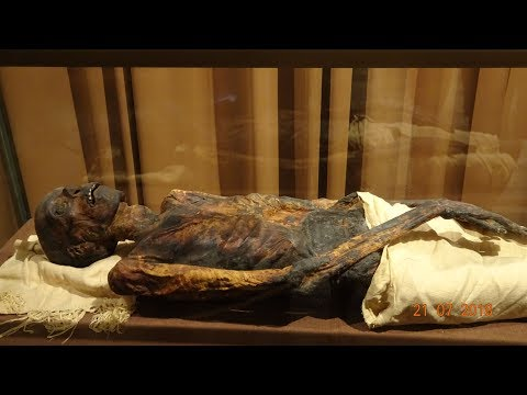 This Egyptian Priest Lived 3000 Years Ago.