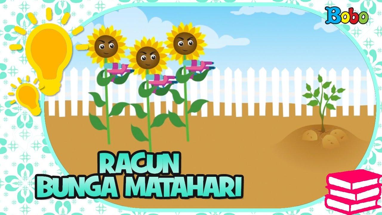 FAKTA UNIK Rahasia Racun Bunga Matahari
