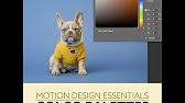 Motion Design Essentials
