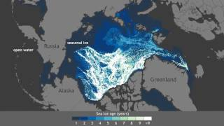 Arctic sea ice growing younger, thinner (narrated version) Decades ago, the majority of the Arctic's winter ice pack was made up of thick, perennial ice. Today, very old ice is extremely rare., From YouTubeVideos