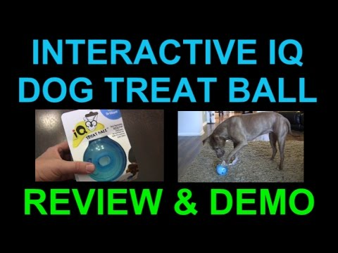 OurPets Interactive IQ Treat Dispenser Ball Dog Toy - Review and Demo