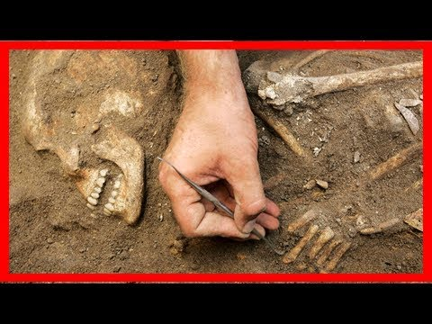 Ancient dna reveals fate of the mysterious canaanites