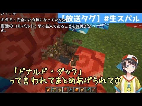 【ホロ鯖】方向性を見失ったアイドル・大空スバル