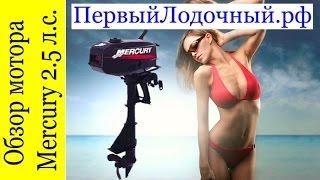 Лодочный мотор Mercury 2.5 M. Обзор от магазина ПервыйЛодочный.рф