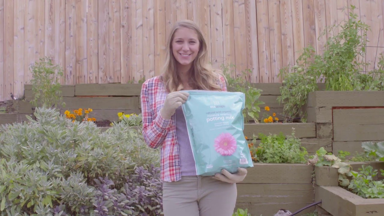 Ecoscraps Recycles Food Waste Into Organic Soil And Plant
