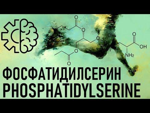 Фосфатидилсерин (Phosphatidyl Serine)100% МОЗГ СПОРТ РИСКИ ЭФФЕКТЫ (PS)on Brain Functions And More