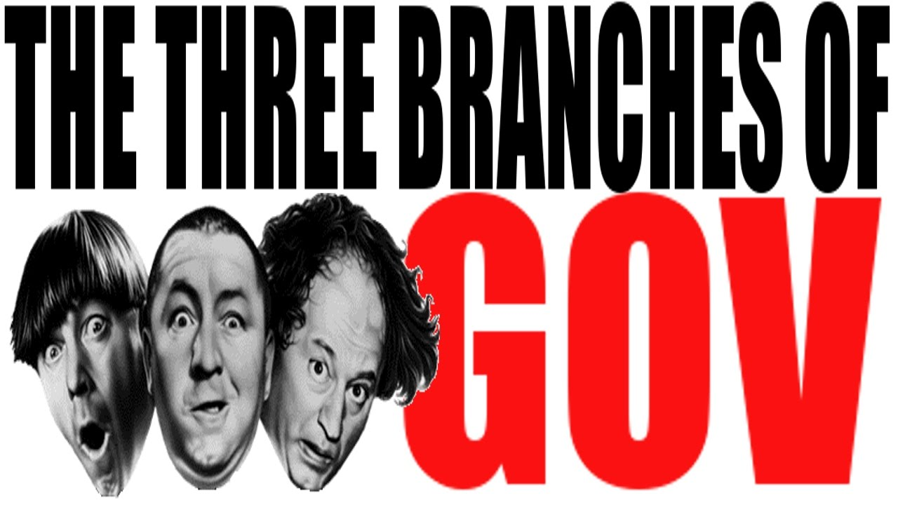 the 3 branches of government explained