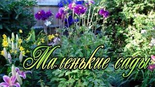 Миниатюрные сады, в которых царит ГАРМОНИЯ. Как этого добиться???