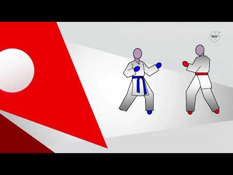 Karate Rules -