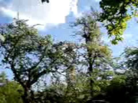 Test Aus Fredersdorf Bei Berlin Garten MOV00048