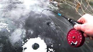 ЭТО АСТРАХАНЬ НАШЁЛ ПРИМАНКУ - КОСИТ РЫБУ Рыбалка на жерлицы и балансиры. Зимняя рыбалка 2021.