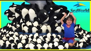 SEAWORLD FAMILY FUN TRIP Shamu Show One World Water Park Kids Video Ryan ToysReview