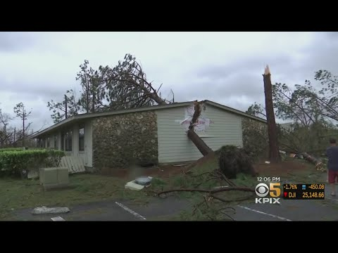 Officials Assessing Damage Caused By Powerful Hurricane Michael