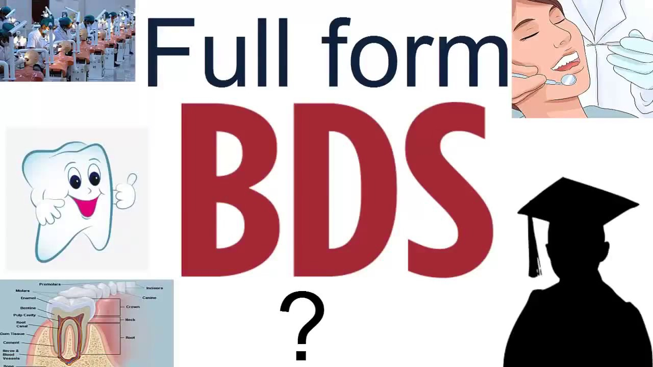 BDS - YouTube