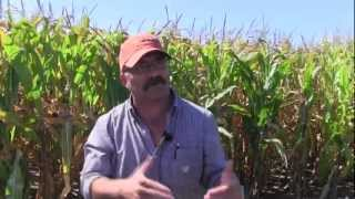 Dan Ferguson -- Farming is an affair of the heart