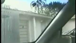 Funny Video - Kid Smears Bird Poop on Dad's Windshield!