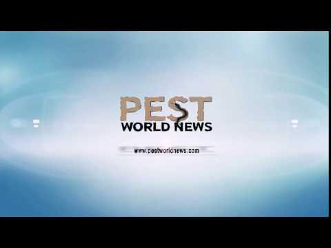 Pest World News VIDEO 10
