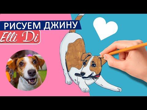ДЖИНА - РИСУЕМ | ЭЛЛИ ДИ