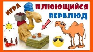 Плюющийся Верблюд настольная игра Board Game Funny Camel Belarus