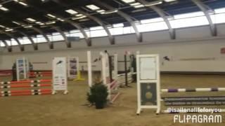 Springwedstrijd bb d pony