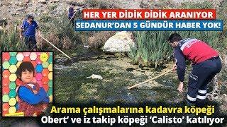 Kağızman'da Kaybolan 9 Yaşındaki Sedanur'u Arama Çalışmalarına Devam Ediliyor!