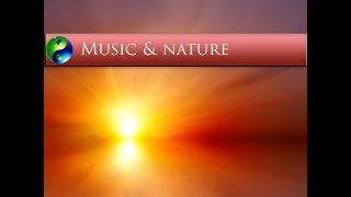 Relaxing Music: Yoga Music; Reiki Music; New Age Music; Relaxation Music; Spa Music; 616