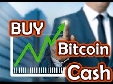 BCH Bitcoin Cash Buy Call Prediction | Cardano News & What is Driving The Market?
