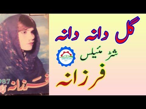 Farzana Ala Gul Dana Dana Old Maidani Mailas mp3