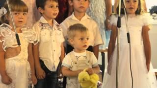 Our Wedding Day - Saenko D+A