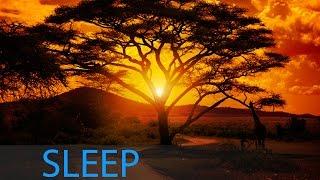 8 Hour Inner Peace Sleep Music: Delta Waves Deep Sleep, Meditation Music, Sleeping Music ☯346