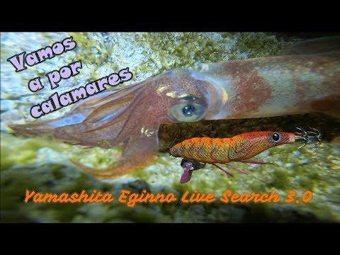 Eging Costa Brava - Vamos A Por Calamares 🦑