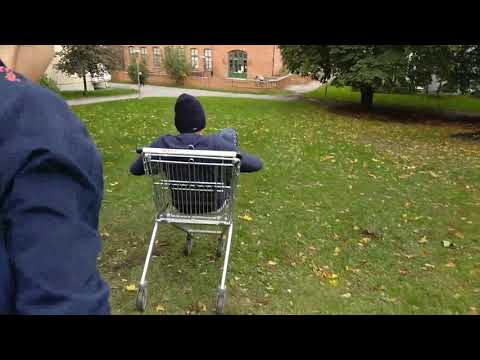 police saw us going down a hill in a shopping cart *Police investigation
