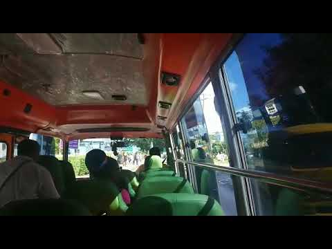 Rush hour reggae bus-Barbados