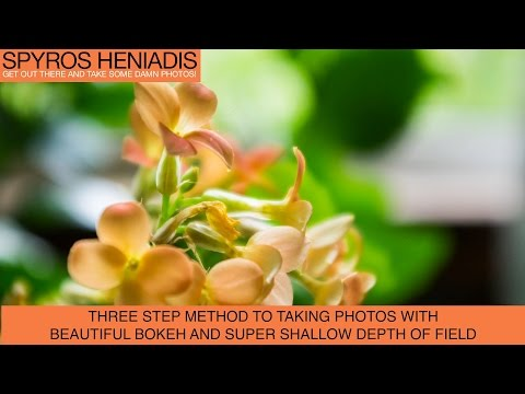Three Steps Method for Taking Beautiful Shallow Depth of Field Photos