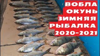 Ахтуба Хороший улов ВОБЛЫ подледной Астрахань Зимняя рыбалка 2020 2021