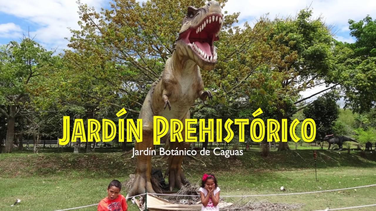 Jard n prehist rico en caguas youtube for Actividades en el jardin botanico de caguas