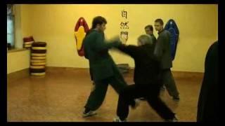 Урок Кунг-Фу.Видео. Часть 11.