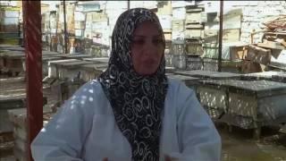 عراقية من بابل تمتهن تربية النحل لإعالة أسرتها
