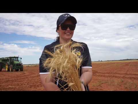 Ruralco Ebony Barnes Youtube