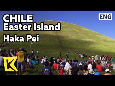 【K】Chile Travel-Easter Island[칠레 여행-이스터 섬]바나나줄기 썰매경기, 하카페이/Haka Pei/Banana Stalk Sled Contest/Tapati