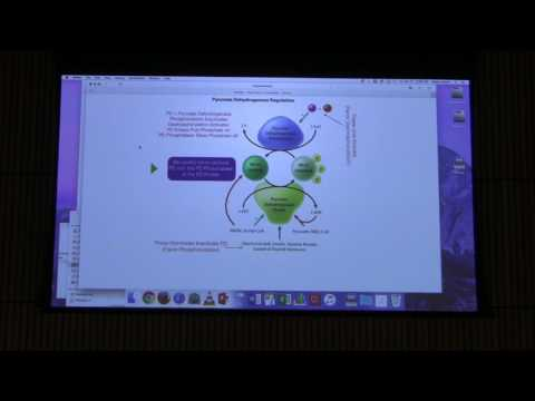 Citric Acid Cycle II - Kevin Ahern's BB 451 Lecture #30 2017