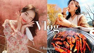 춘천 당일치기 데이트 vlog 감자빵, 춘천닭갈비, 핑…