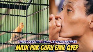 VIRGO Kenari Lokal Si RAJA GOYANG, Milik Pak Guru EMIL QYEP...!!!!!
