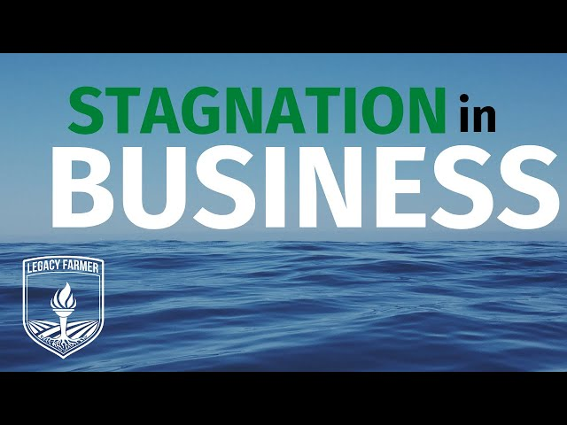 Business Stress and Stagnation