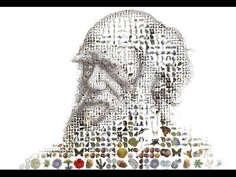 Five Minutes on Scientific Revolutions