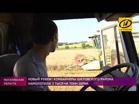 Первый экипаж-трёхтысячник по намолоту зерна появился в Могилёвской области