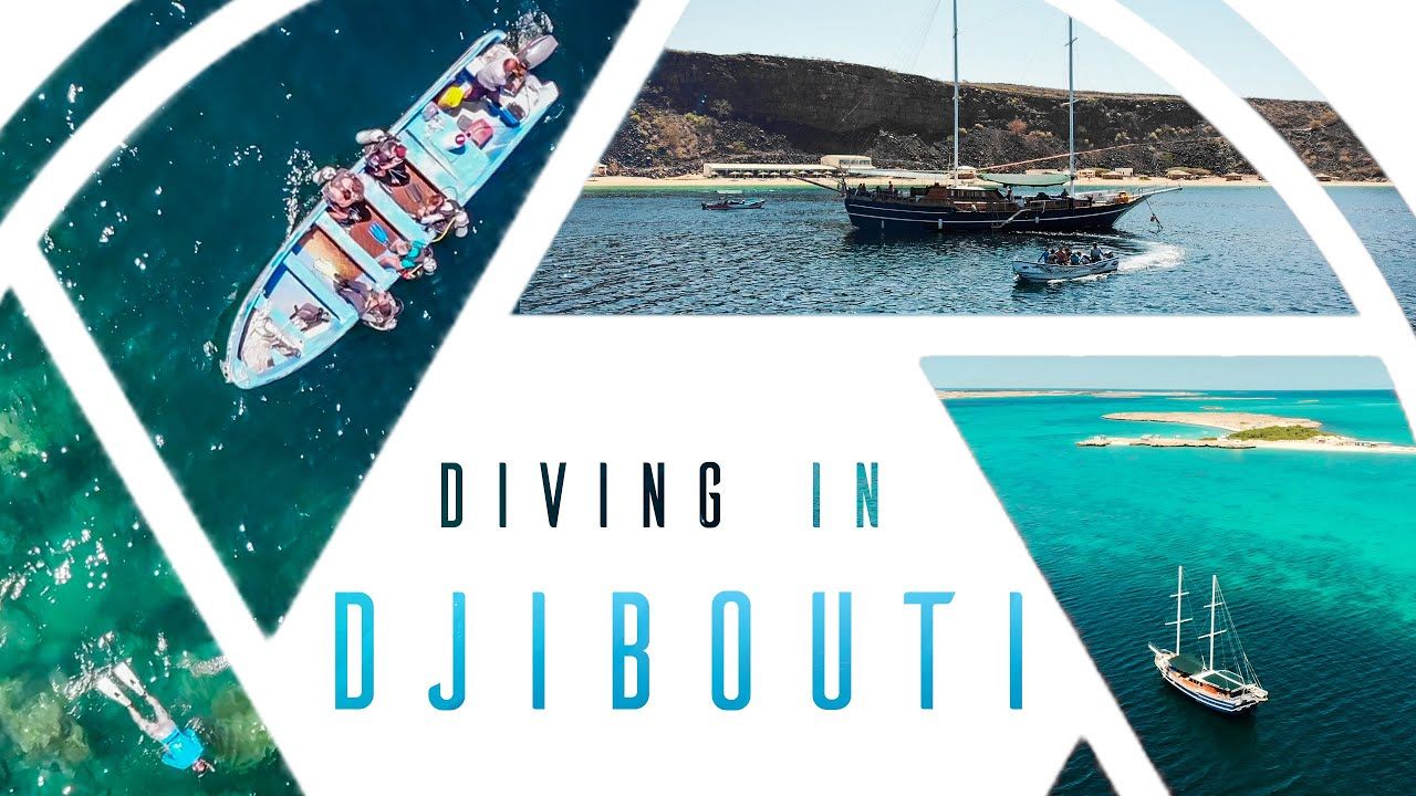 Diving in Djibouti-Plongée à Djibouti