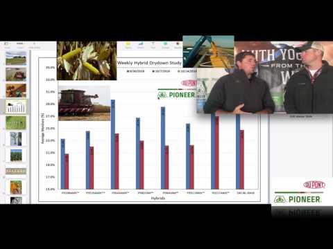 Pioneer® GrowingPoint® - 2016 Harvest