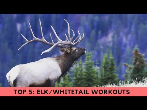 [ TOP 5 ] Best Workouts For Hunting