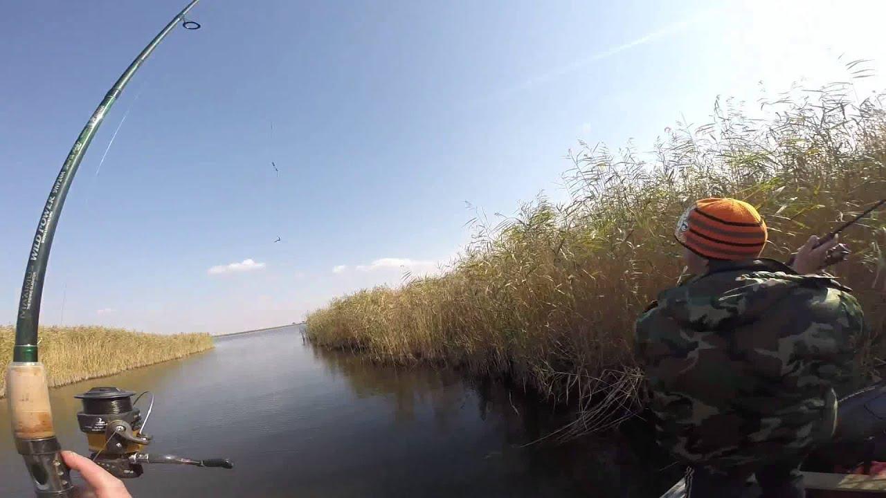 рыбалка в абинске видео